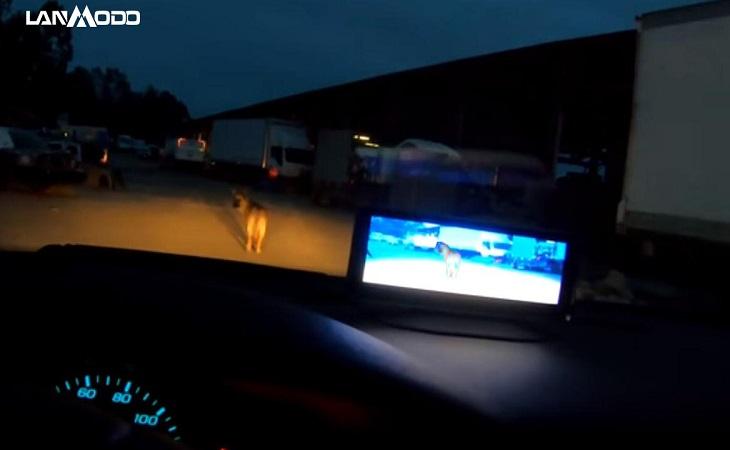 Sistema de Visión Nocturna Automovilístico Lanmodo Vast